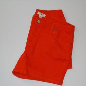 Cato Shorts